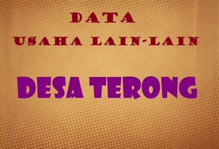 DATA USAHA LAIN-LAIN DESA TERONG