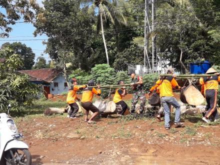 Aksi FPRB Membersihkan Sisa Tumbangnya Pohon Beringin Terong